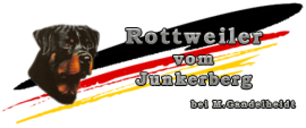 Rottweiler vom Junkerberg